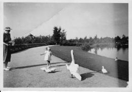 Boeremapark 1939 (foto J Hoven - 3)