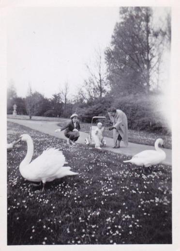 Boeremapark 1952 (foto Odijk - 1)