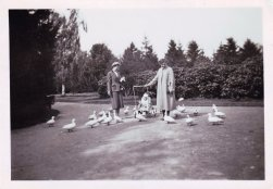 Boeremapark 1952 (foto Odijk - 5)