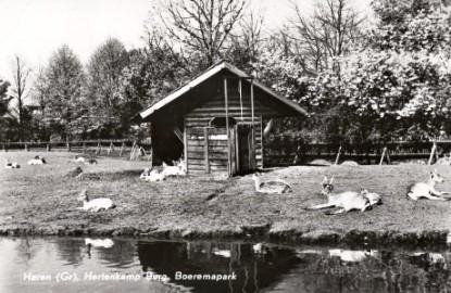 Boeremapark hertenkamp omstreeks 1948 1