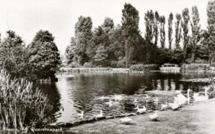 Boeremapark omstreeks 1953 (1)